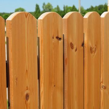 Zaun & Sichtschutz